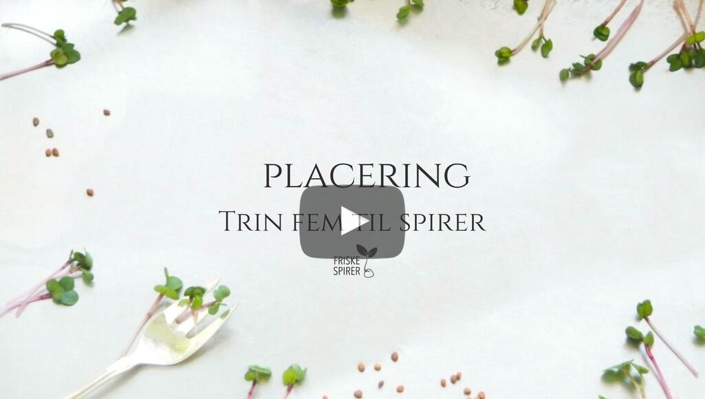 Placering af spirefroe FRISKE SPIRER