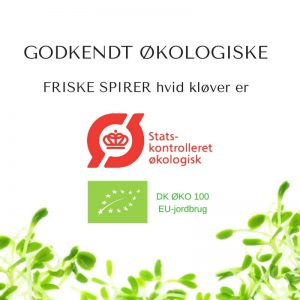 Oekologiske hvid kloever certificerede spirefroe fra FRISKE SPIRER