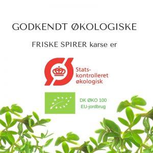 Oekologiske karse certificerede spirefroe fra FRISKE SPIRER