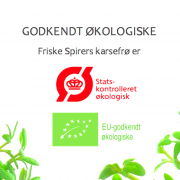 Økologiske karsefrø fra danske FRISKE SPIRER