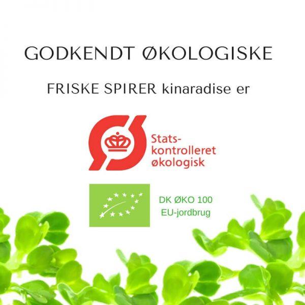 Oekologiske kinaradise certificerede spirefroe fra FRISKE SPIRER
