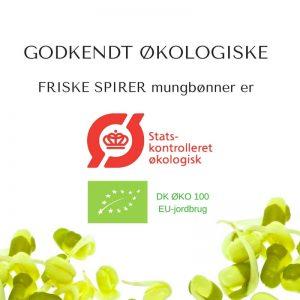 Oekologiske mungboenne certificerede spirefroe fra FRISKE SPIRER