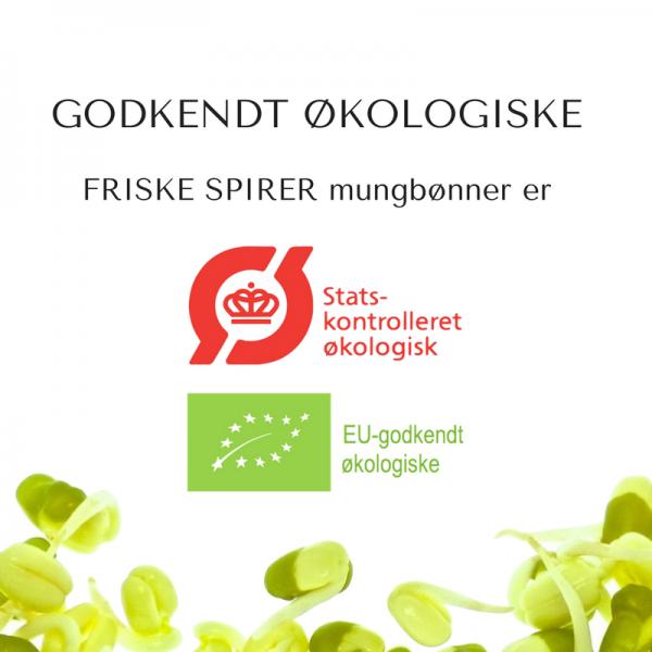 Oekologiske mungboenner certificerede FRISKE SPIRER