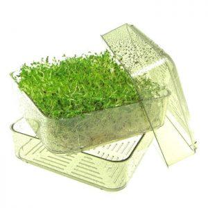 Bergs Bio Salad bakke FRISKE SPIRER