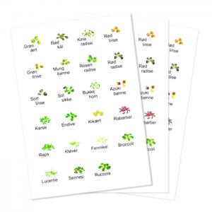 Hvide labels med spirer 24 per ark FRISKE SPIRER