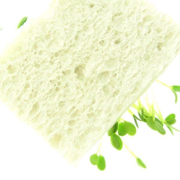 Miljoevenlig Spiresvamp cellulose FRISKE SPIRER