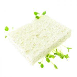 Cellulosesvamp miljøvenlig SpireSvamp FRISKE SPIRER