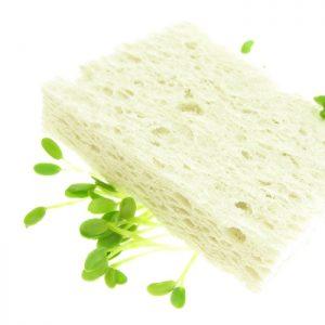Nedbrydelig hvid svamp af cellulose SpireSvamp FRISKE SPIRER