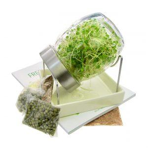 Spireglas startkit glas + spirebog + spirefroe FRISKE SPIRER