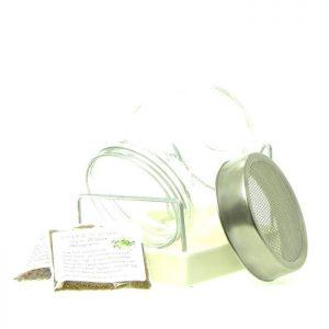 Startpakke oekologiske spirefroe og spireglas FRISKE SPIRER