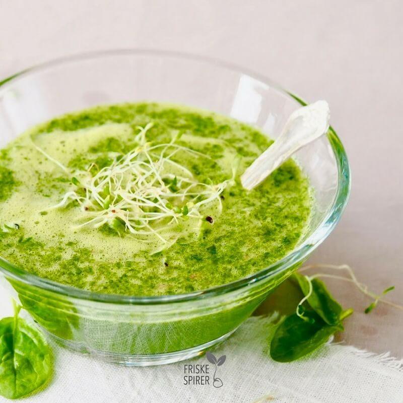 Smoothie med oekologiske broccolispirer FRISKE SPIRER