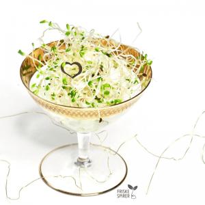 Spiselig bordpynt med lucernespirer FRISKE SPIRER