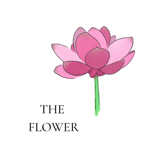 the flower by fables fresh sprouts