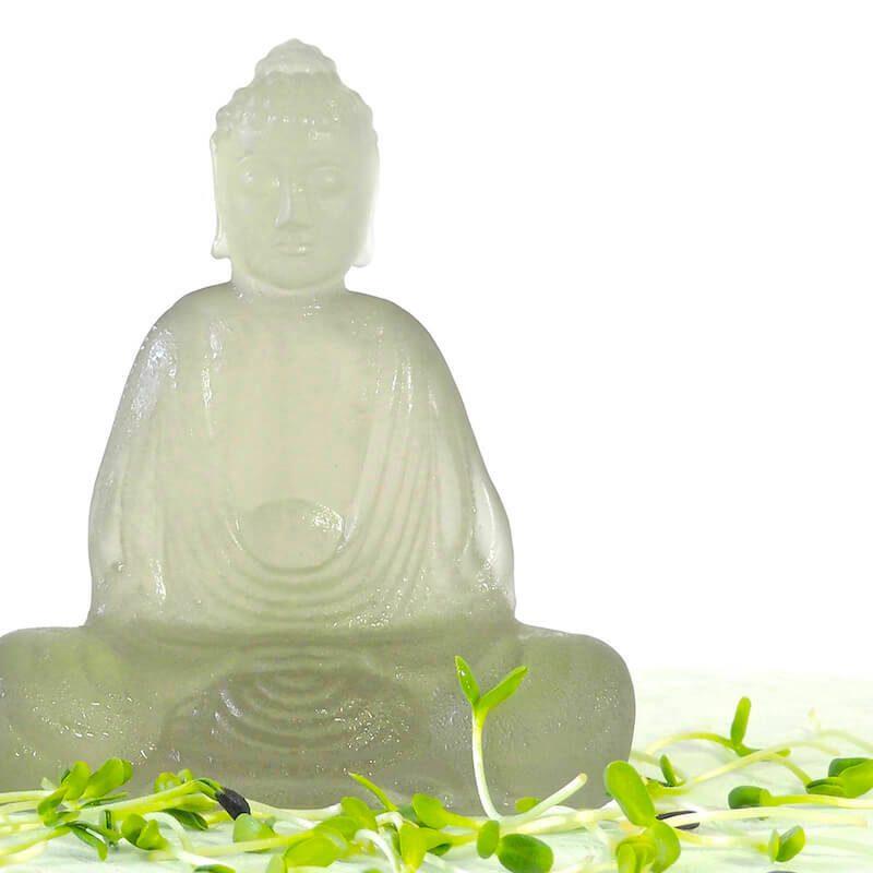 Zenhave buddha med spirer FRISKE SPIRER