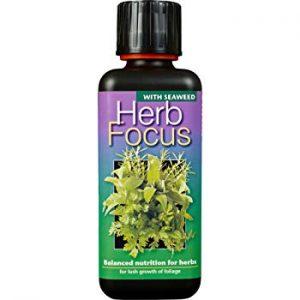 Mikrogroent gødning Herb Focus FRISKE SPIRER
