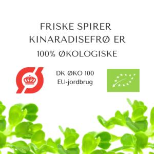 certificeret oekologiske kinaradisefroe