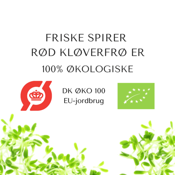 certificeret okologiske rød kloeverfroe
