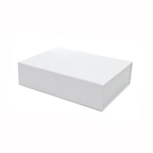 froekasse i hvid pap med magnetlaag