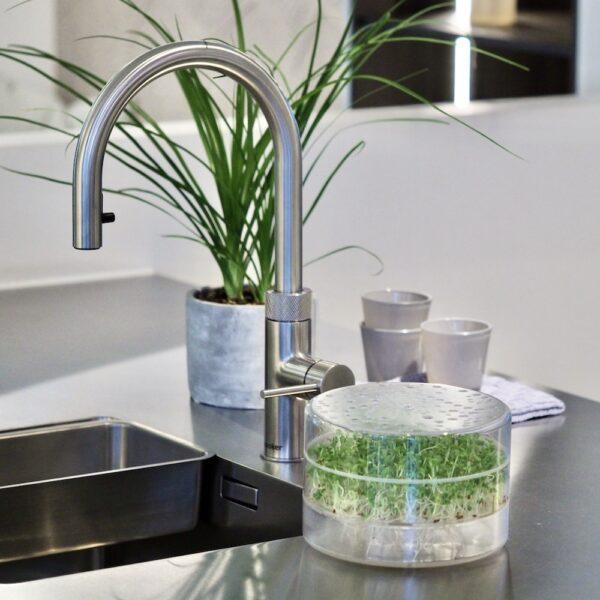 SpirePerle spirekasse til dyrk selv spirer og mikrogroent i dit koekken